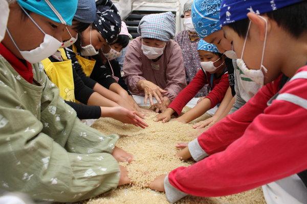 麦と麹菌を混ぜ合わせる作業