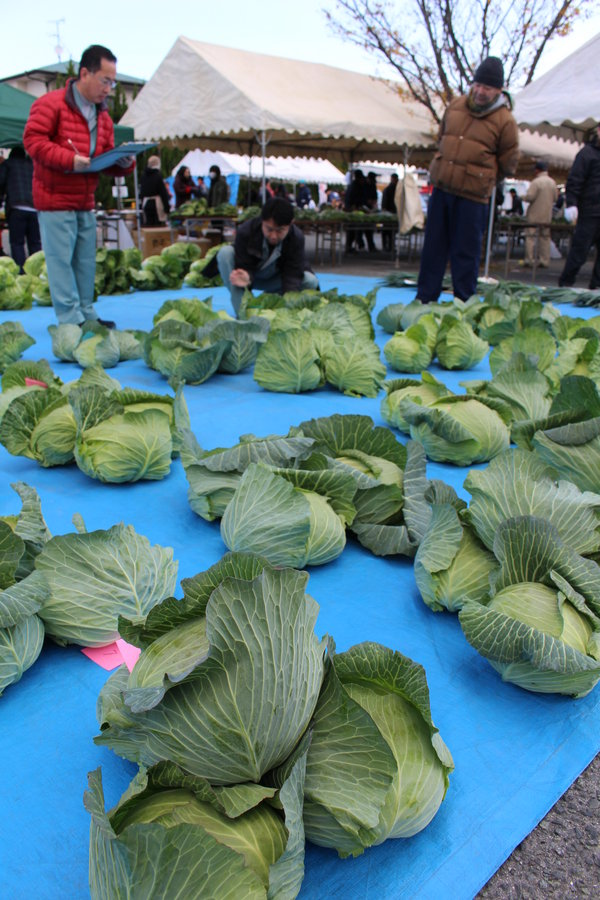 城山地区でとれた野菜を審査する審査員ら