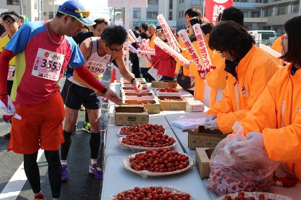新鮮なミニトマトやイチゴ