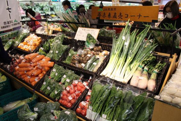 とれたての熊本市産野菜