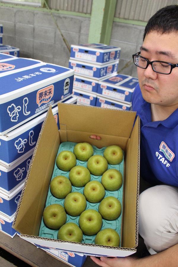 高品質な梨を消費者のもとにお届けします。