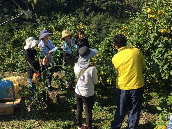 熊本初の「コラボワーク」に臨む母親と上村副部会長(右)