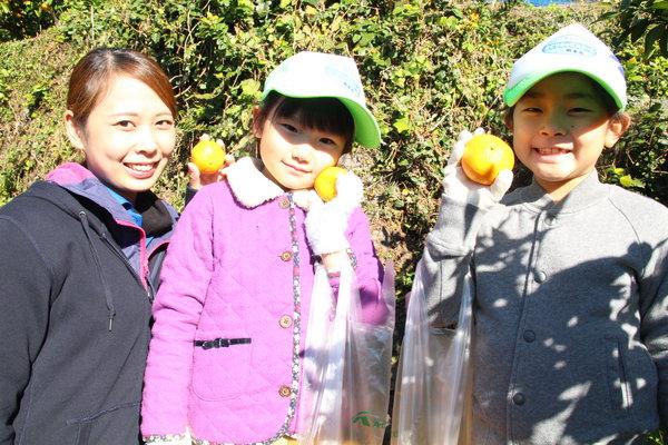 鮮やかな橙色のミカン美味しそう〜♪