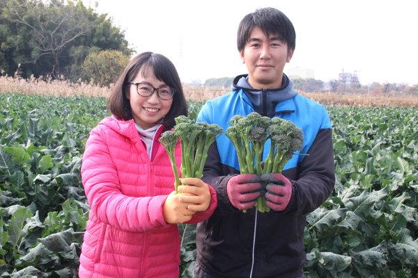 高品質なスティックセニョールを栽培する吉岡優作さん(右)と妻の奉子(よしこ)さん
