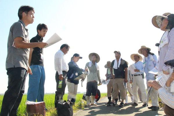 営農指導員(左)の説明を聞く生産者ら(20日、御幸地区の圃場)