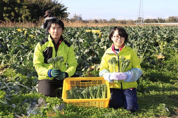 順調に収穫を進める吉岡優作さん(左)と妻・泰子(よしこ)さん